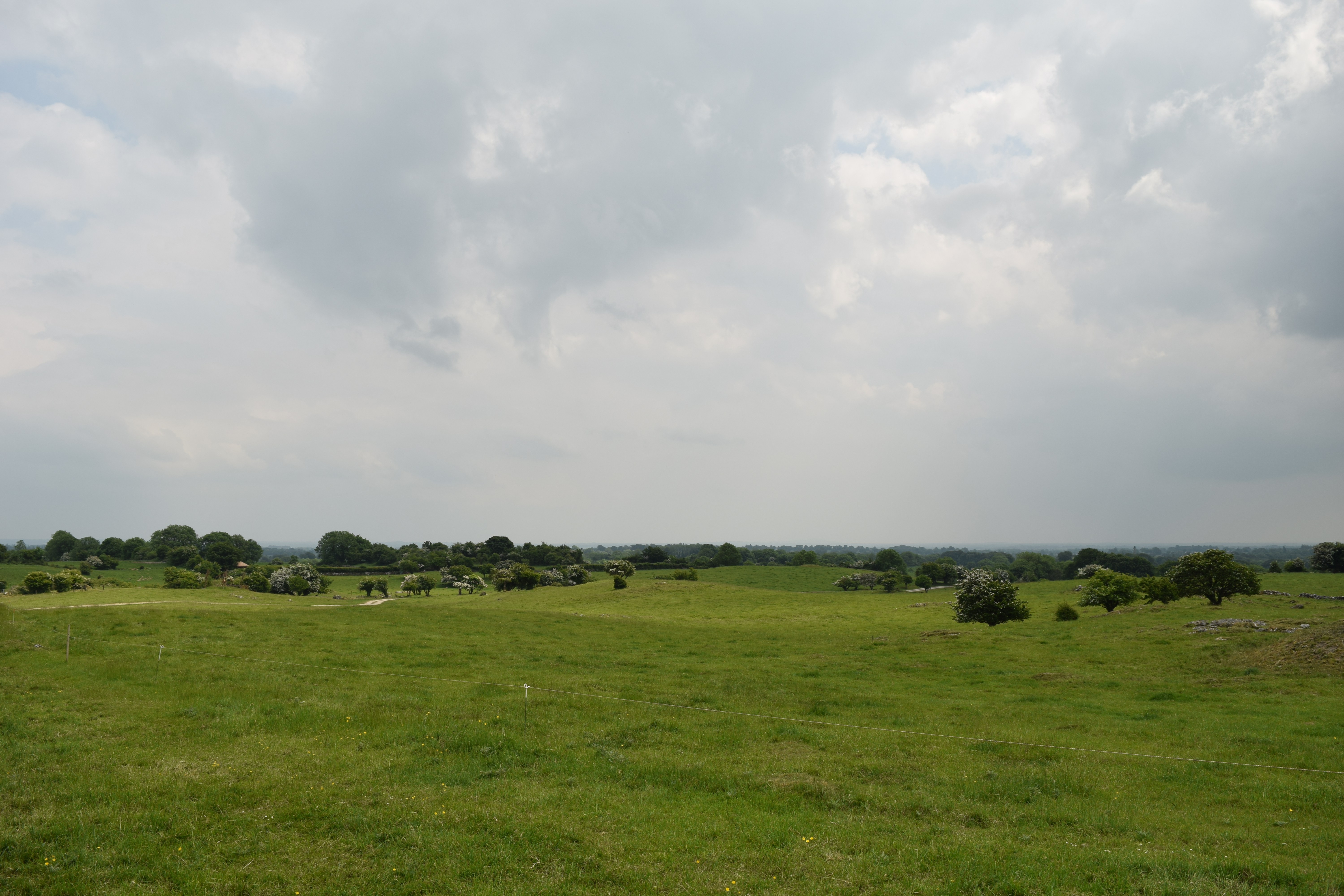 124 Degrees The Curragh, County Kildare