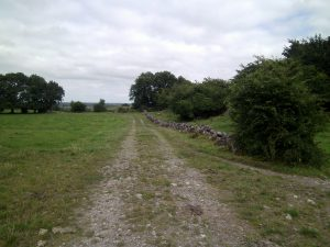 Ireland Tour Pics Royal Path to Tara